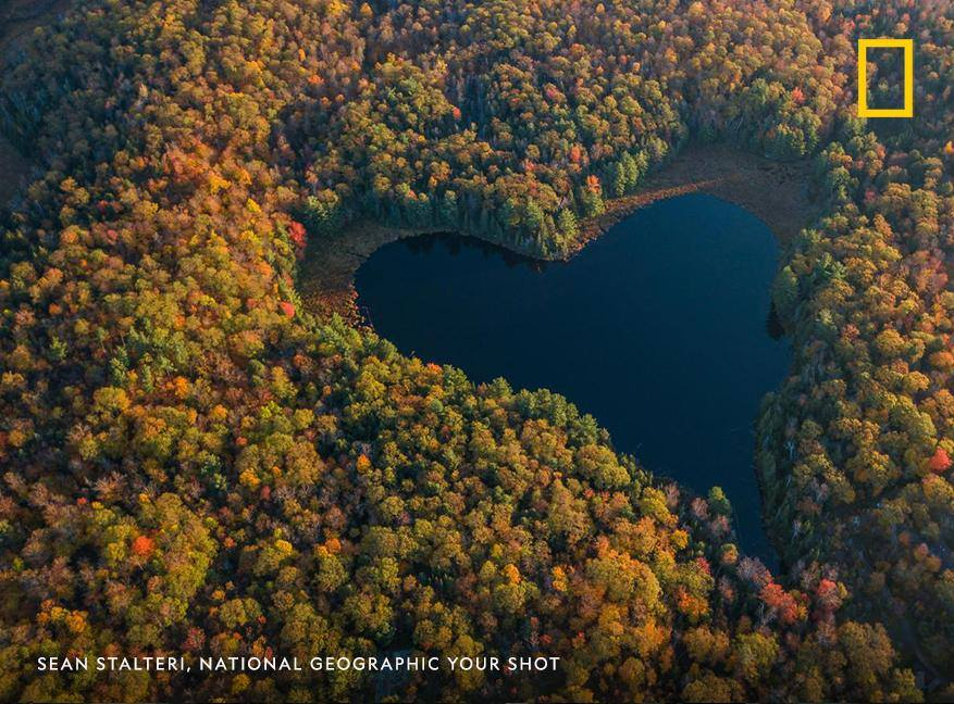 Oaks, maples, and dogwoods each begin to transition from green to reveal shades of crimson and russet. Hickories and aspens show off brilliant golds and yellows. In the Northern Hemisphere, the heart of fall is here. https://on.natgeo.com/2QN36pV