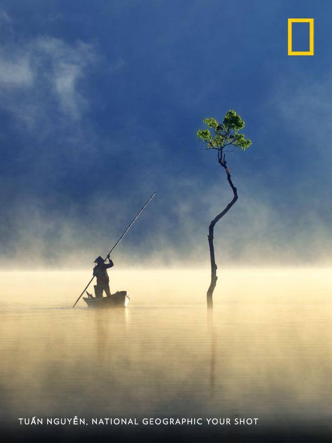 This serene moment on a freshwater lake in Vietnam was captured by Your Shot photographer Tuấn Nguyễn. https://on.natgeo.com/2E8ssJY